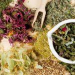 Сбор трав для похудения