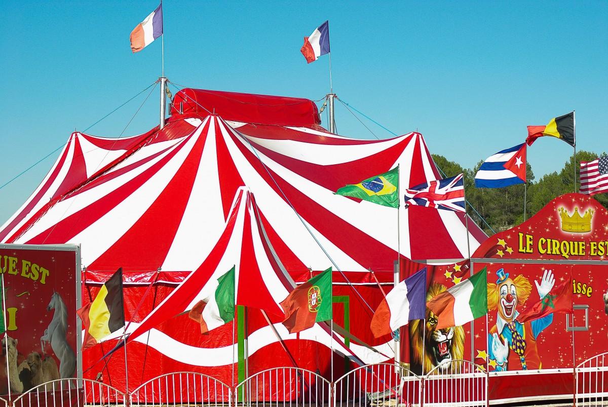 Про цирк для детей